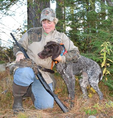 AKC GSP, AKC Germain Shorthaired Pointer, Germain Shorthair Pointer, NAVHDA GSP, female GSP